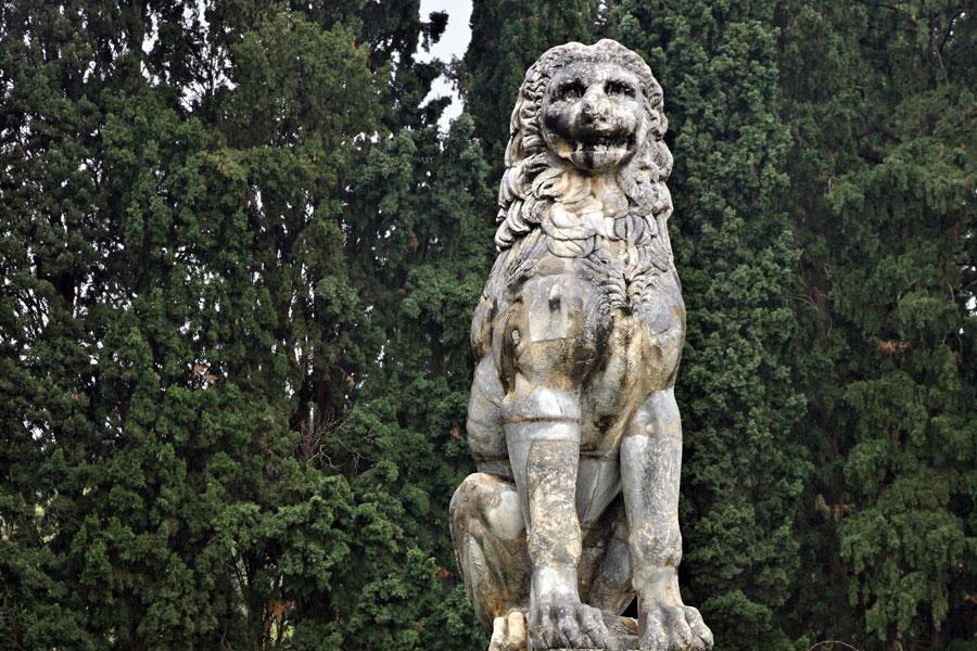 xerronoa-lion